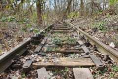 Gleise der Stammbahn