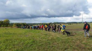 24 h Potsdam-Havelland - geführte Wanderungen 100 km, 50 km und 25 km @ Schloß Caputh / Schwielowsee