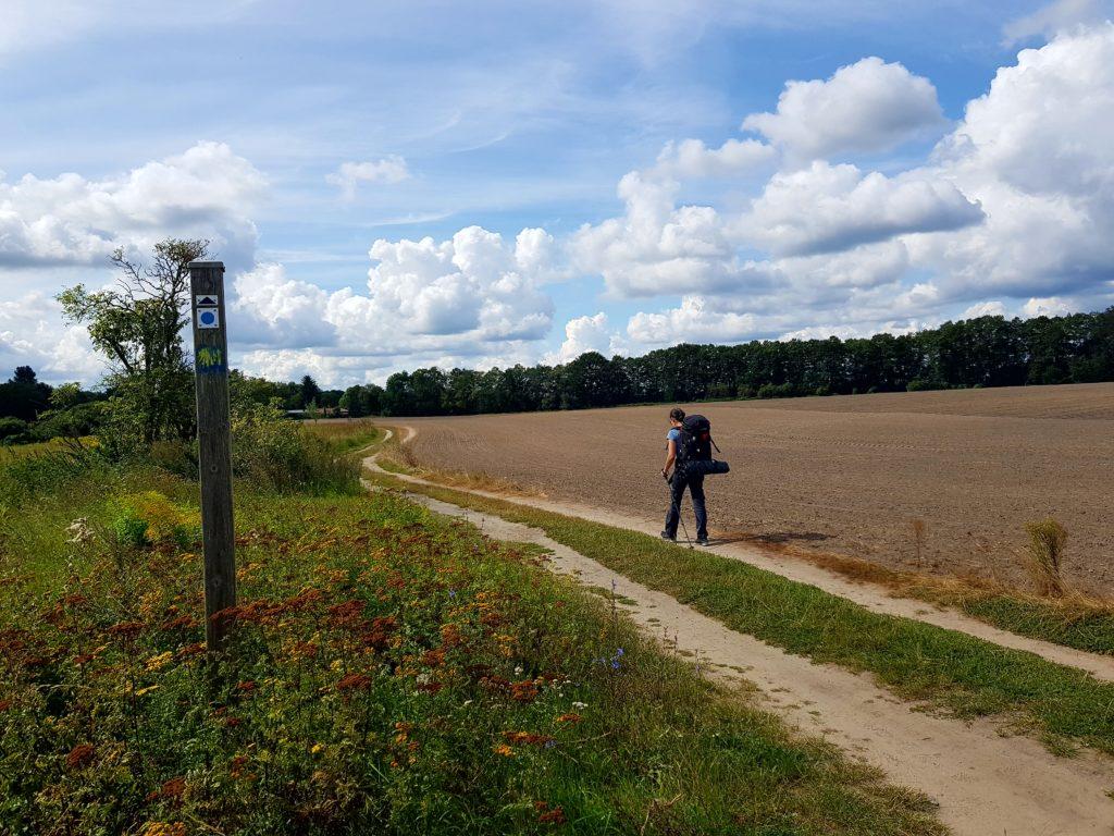 Feldweg nach Kähnsdorf