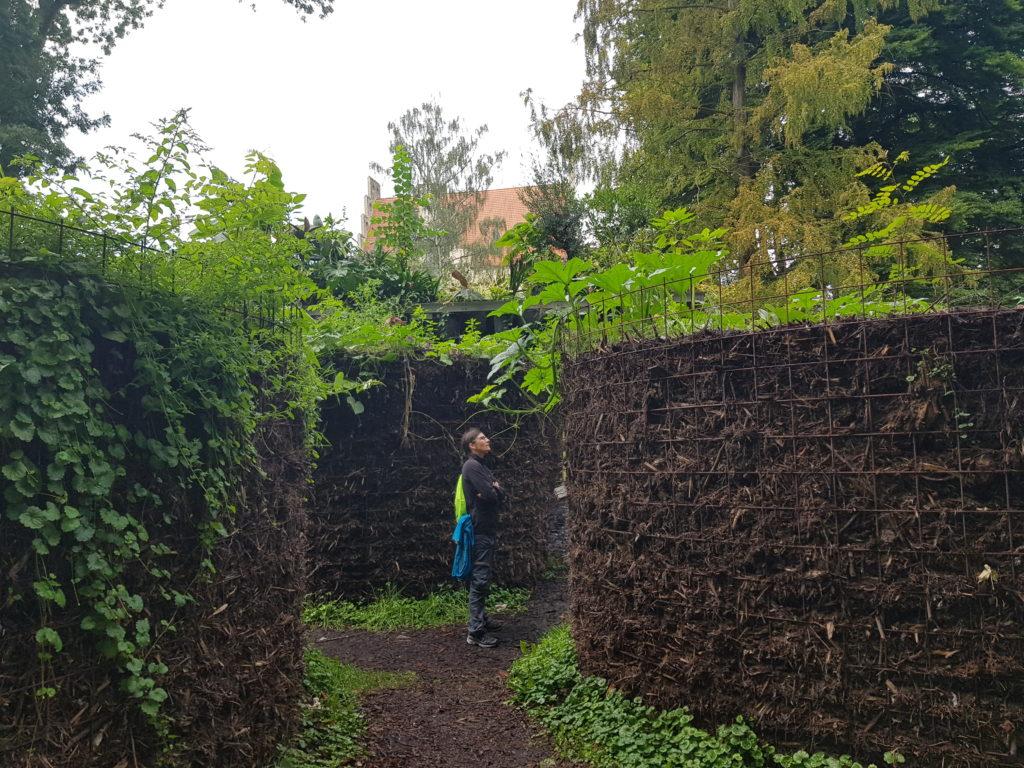 Im Paradiesgarten Wittenberg