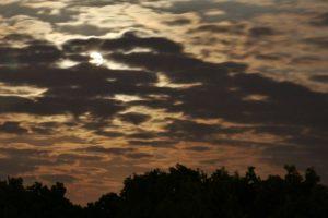 Mondscheinwanderung durch die Bornimer Feldflur @ Potsdam Kirschallee
