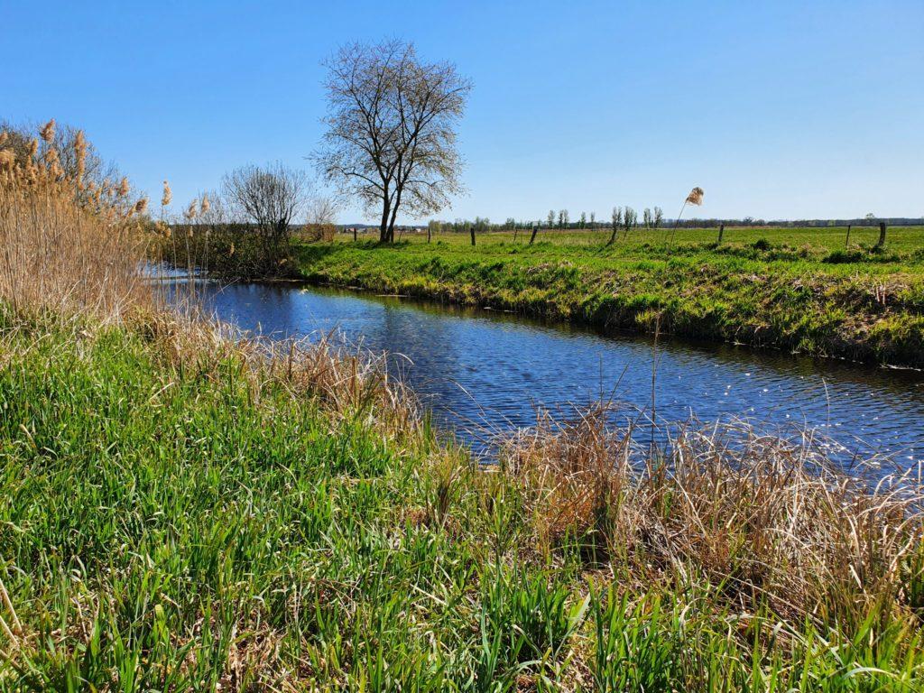 Flußlandschaft an der Nuthe bei Saarmund