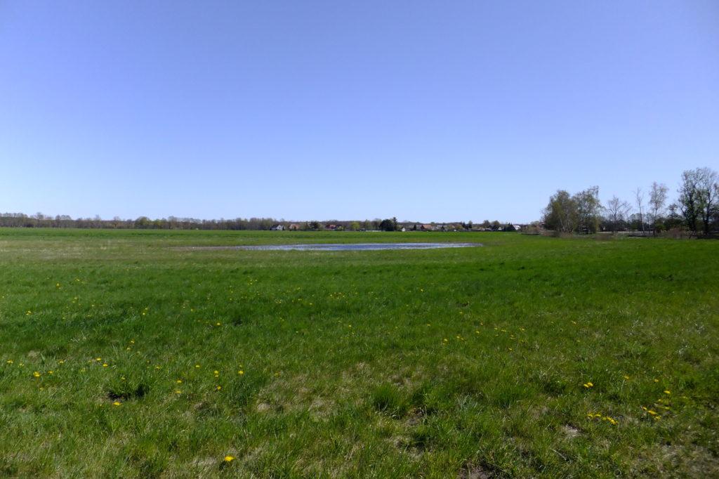 Nuthewiesen bei Fahlhorst