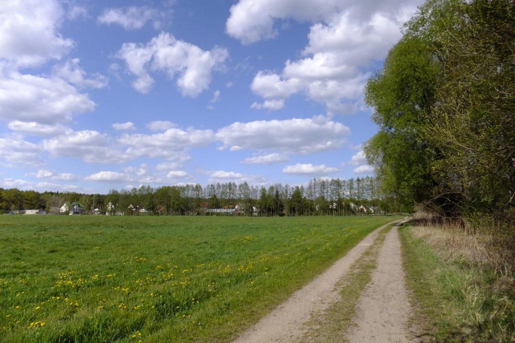 Feldweg bei Woltersdorf