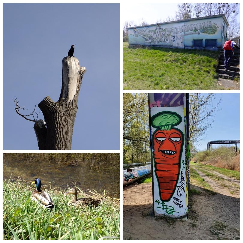 Impressionen an der Nuthe zwischen Potsdam und Saarmund