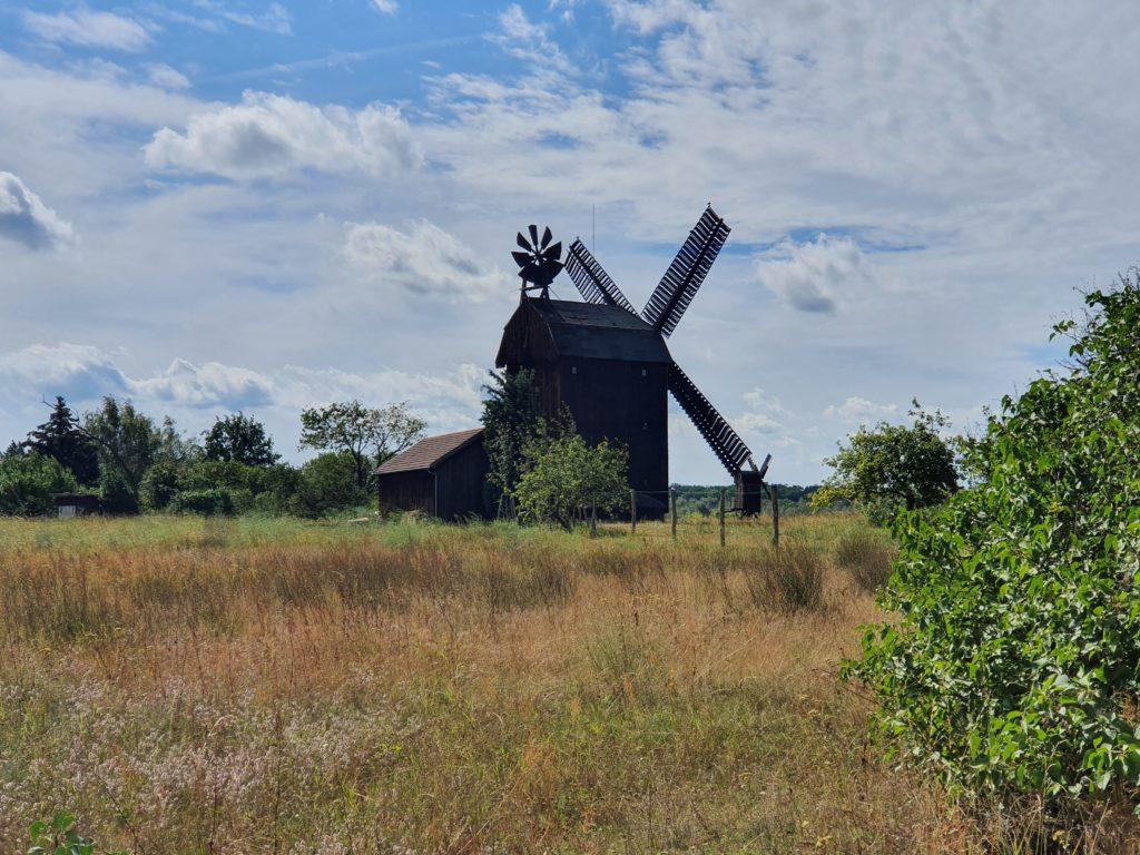 Paltrockwindmühle in Langerwisch