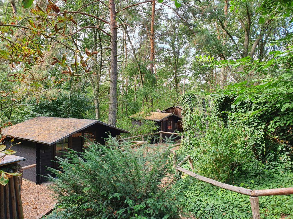 Waldhaus Großer Ravensberg - Hütten