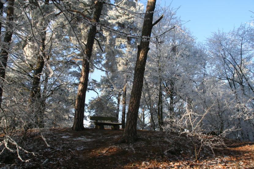 Ravensberge Potsdam im Winter
